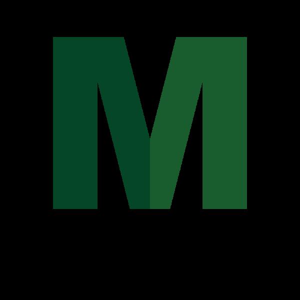 Meta Translator Logo